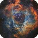 I cannot believe my own eyes - Rosette Nebula,                                Ray's Astrophotography