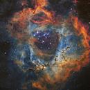I cannot believe my own eyes - Rosette Nebula,                                Ray's Astrophotog...