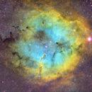 IC 1396 - Elephant Trunk Nebula,                                Jeff Heinen
