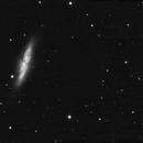 Messier 82 - the Cigar galaxy,                                Jason R Wait