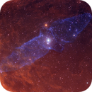 The Squid Nebula OU4 HO Bicolor Image,                                Eric Coles (coles44)