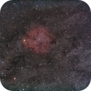 IC 1396  - Widefield,                                Wolfgang Zimmermann