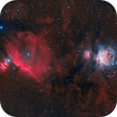Orion and Horsehead in HOO,                                Tommy Lease