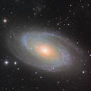 "M81  ""Bodes Galaxy"" + IFN,                                Lars Stephan"