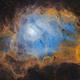 NGC6523 Lagoon Nebula,                                Peter Jenkins