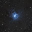 Iris Nebula (NGC 7023),                                Michael Klosch-Trageser
