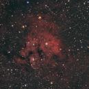 NGC 7822,                                Michael Timm