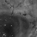 NGC 2237,                                Ron Stanley