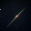 NGC 4565 - Needle Galaxy,                                Neil Emmans