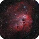 IC410 in LRGB with Narrowband,                                Bart Delsaert