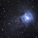 NGC  7023 - IRIS,                                fabrizio brembilla