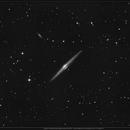 NGC4565 ( 04.2020),                                jp-brahic