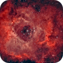 NGC 2244 and Rosette nebula,                                Roy Hagen