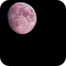 conjunction Moon & Jupiter,                                Lorenzo Palloni