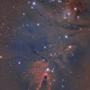 NGC 2264 Cone Nebula and Christmas Tree Cluster,                                Chad Andrist