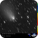 cometa C/2012 K5 Linear,                                Rolando Ligustri