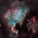 North American and Pelican Nebulas (NGC 7000 + IC 5070),                                Nathan Campbell