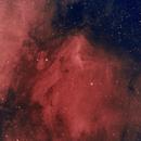N/B Pelican Nebula,                                Eric Kallgren