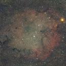 IC 1996 Elephant Trunk Nebula,                                Markus_B.