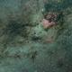 NGC 7000 - First Light,                                markusbodensee