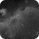 IC 2177 Seagull 2 Panel Mosaic,                                M. Levens