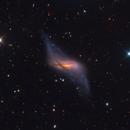 NGC 660 | A Hostile Merger,                                Kevin Morefield