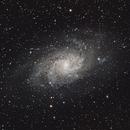 M33 Triangulum,                                Dan West