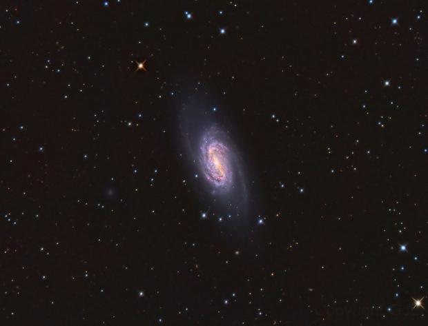 NGC 2903 in Leo,                                GJL