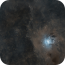 Iris Nebula (Starless),                                Tristan Campbell