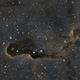Elephant Trunk Nebula - IC1396 - SHO,                                Jason Schella