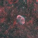 NGC-6888 Crescent Nebula,                                David Gwyn
