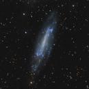 NGC 4236 in Draco,                                Jim Thommes