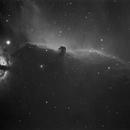 Horsehead nebula,                                Hans H.