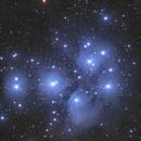 M45,                                whitenerj