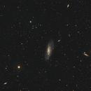 M106 galaxy,                                Ivan Bosnar