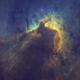 Sh2-155 •The Cave Nebula in SHO,                                Douglas J Struble