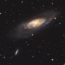 M 106 and surrounding galaxies,                                Chris Parfett @astro_addiction