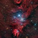 NGC 2264,                                Константин