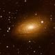 Sunflower galaxy,                                Chris