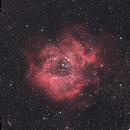 NGC 2237,                                Sung-Hui Tsai