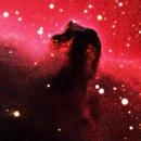 Horsehead and Flame Nebulae,                                Saied Asfa