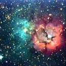 NGC 6514 - Nébuleuse Trifide,                                Jean-Pierre BONNEFOY