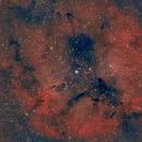 IC 1396,                                redman21