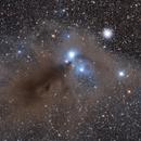 NGC 6729 Molecular Cloud in Corona Australis,                                Peitao Yan