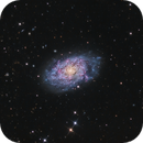 NGC 7793 Flocculent Spiral Galaxy in Sculptor,                                Terry Robison