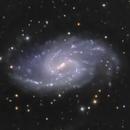 NGC 3359,                                Frank Colosimo
