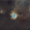 Rosette Nebula SHO QHY163 Rokinon 135mm,                                Eric Walden