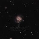 M-61 with Supernova SN2020 jfo,                                Steve