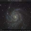 M 101 The Pinwheele Galaxy,                                Dominique Callant