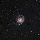 M101 Pinwheel Galaxy,                                Richard Vanderbeek